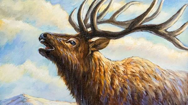 2015 NRA Youth Wildlife Art Contest Award Winner