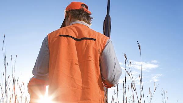 Back of a hunter in blaze orange holding a shotgun with the sun in the background