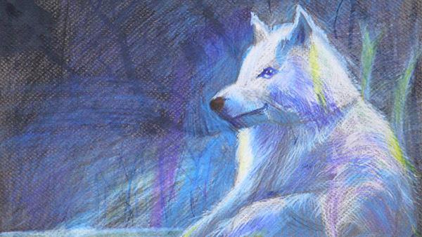 2016 NRA Youth Wildlife Art Contest Award Winner