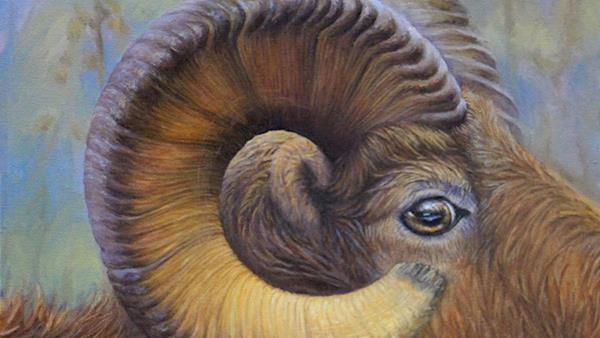 2016 NRA Youth Wildlife Art Contest Award Winner