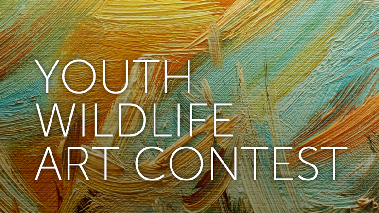 NRA Youth Wildlife Art Contest title over a paiting