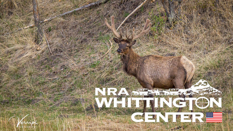 NRA Whittington Center Hunting